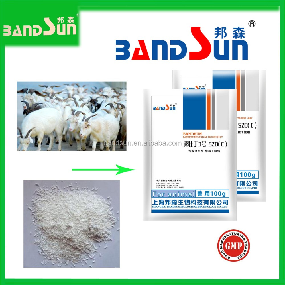 poultry feed additive coated sodium butyrate hot sale feed grade broiler medicine animal feeds