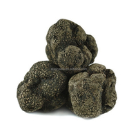 Dried truffle black Truffel