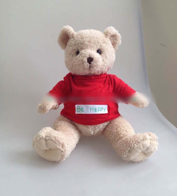fashion and popular plush teddy bear with hood