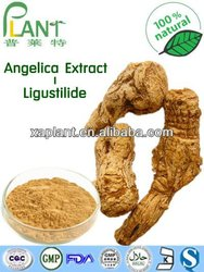 angelica sinensis root extract