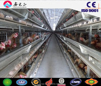 chicken egg poultry farm,Steel structure poultry farm,chicken house with feeding equipments
