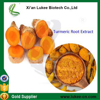 Quality 95% Curcumin organic turmeric Curcuma longa Extract powder for sale