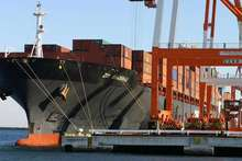 experienced FCL/LCL sea freight sea shipping algiers