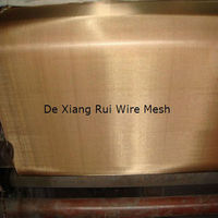 Plain Weave Red Cooper Wire Mesh