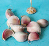 /product-detail/wholesale-low-price-fresh-nature-garlic-from-shandong-china-60564416134.html