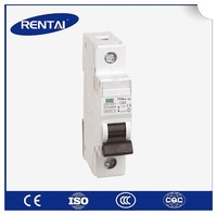 RT005-2 best selling hot chinese mcb circuit breaker 3p 2 pole mcb