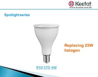 R50 STD 4W LED Spotlight