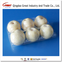 Disposable Plastic Clamshell Fruit Pear Packaging Tray