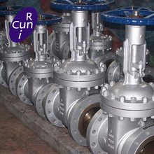 API 600 Rising Stem Flanged Ends Cast Gate Valve with Manual Operated Manufacturer China