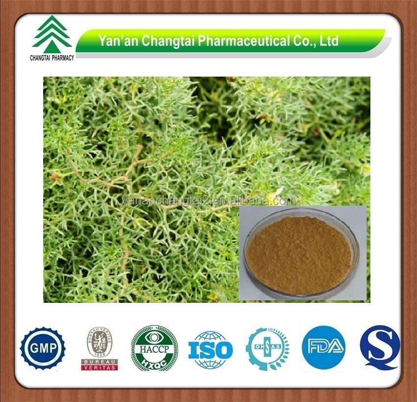 GMP factory supply herb organic Common peganum seed P.E.