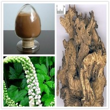 Black Cohosh Extract/Black Cohosh Herb with free sample Black Snakeroot Extract