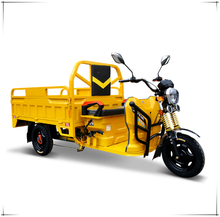 china 60V 1000W 2 seats transport E assisted trike electric tricycle for cargo Thailand Malaysia Korea