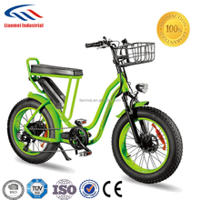 20inch lady fat tire electric bike