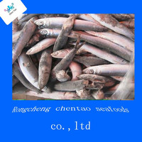 china frozen anchovy pesca