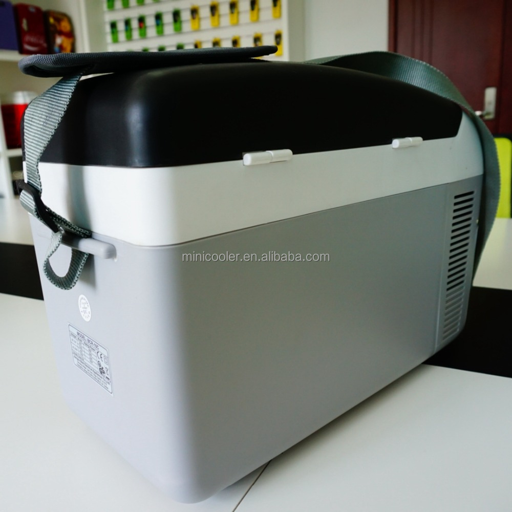 10 liters CE, GS thermoelectric refrigerator for outside fishing with straps