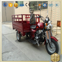 Steel Plate Three Wheel Motorcycle for Cargo Brand OEM Drum Disc Brake Starting System Electrical Kick