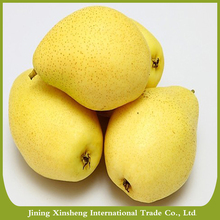 Fresh early matured Su pear