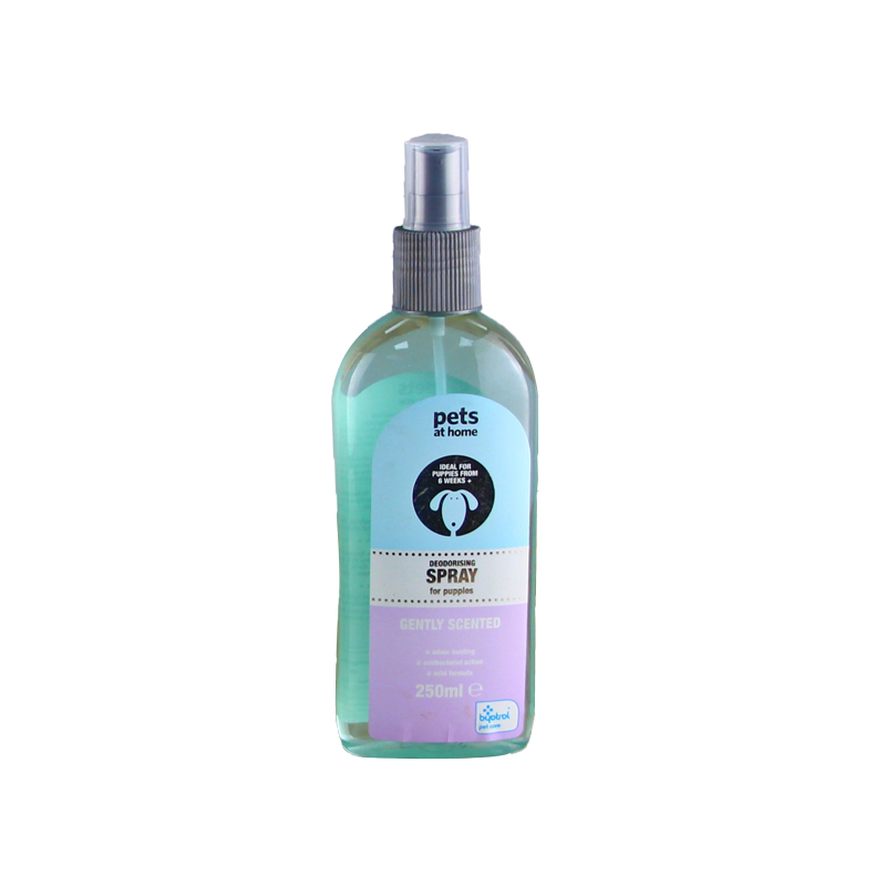 250ML Anti-Secco Organico Pet Cane Shampoo OEM