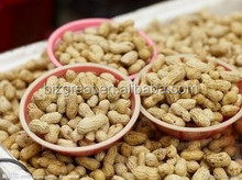 Chinese Peanut inshell with good quality for sale