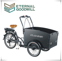 2015 hot sale three wheel electric Cargo Bike/Electric tricycle cargo trikle front box UB9031E-6S