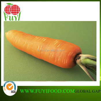 frozen vegetables wholesale organic carrots carrot exporter