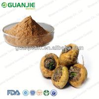 High quality natural pure maca extract 10:1 50:1