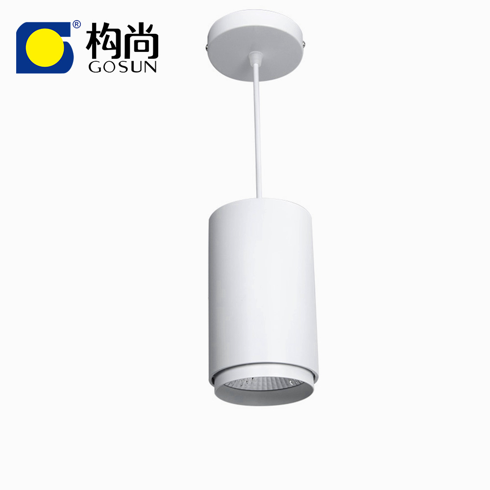 COB 30W CRI97 LED suspended round surface mounted <strong>downlight</strong>