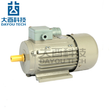 50hz 110v High Torque Low Rpm Single Phase 120v Ac Electric Motor