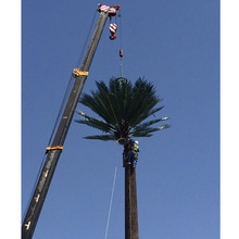15-40 M camouflaged palm tree telecom tower