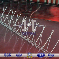 304 Stainless Steel Wire Welded Anti Bird Spikes