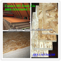 3~25mm OSB board in sale