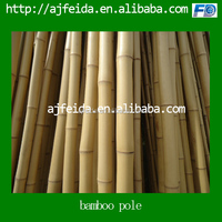 Raw and high quality bamboo pole.