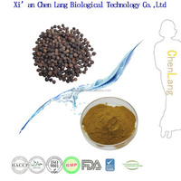 Lowest Price Black Pepper Extract 10% 98%