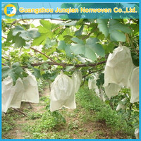 Bird-Trouble Prevention Agriculture Non-Woven Fabric High Quality Fruit Protection Bag Grape Protection Bag