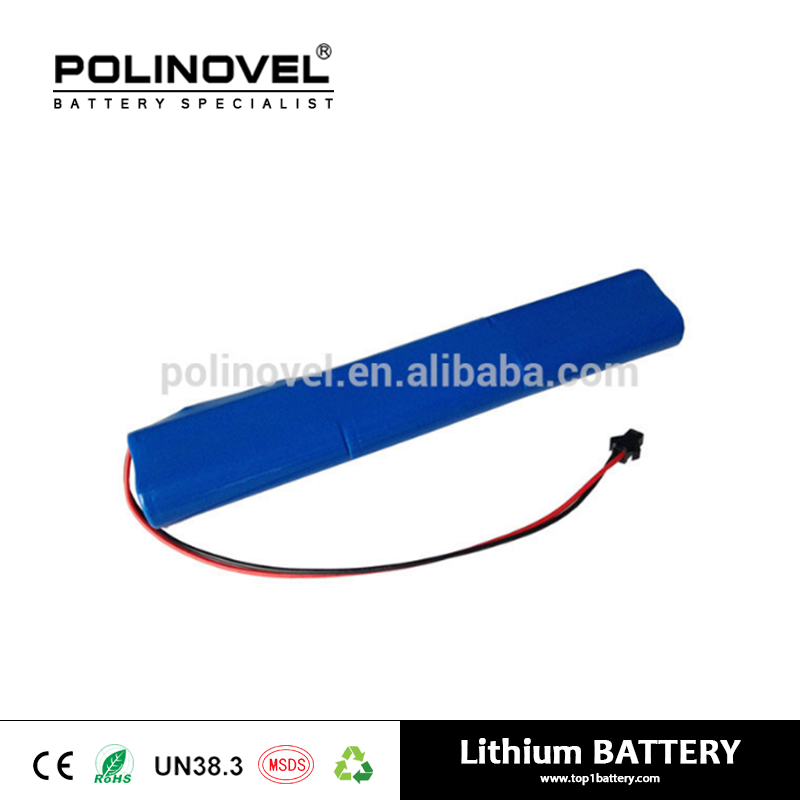 Customized recharge 12V 8Ah li-ion battery