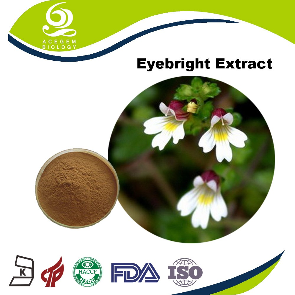 Pharmaceutical grade organic pure eyebright extract powder