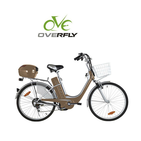 Steel frame city electric bike with box and basket XY-EB008