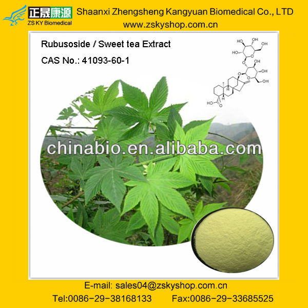 Natural Sweet tea leaf Extract with Rubusoside 20%-70% HPLC