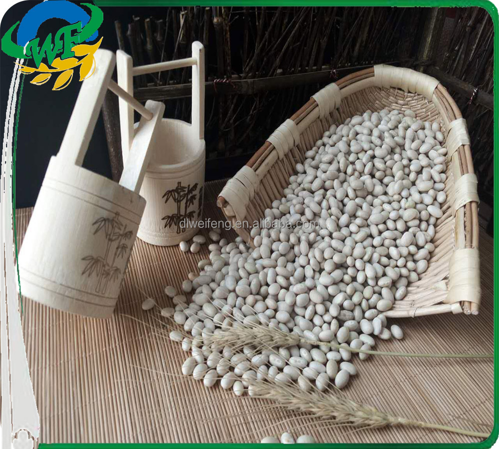 2015 JSX food manufacturing navy beans from china export types of kidney beans