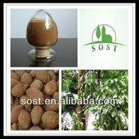 Natural Plant Extract Powder Herbal Drink