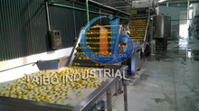 High output vegetable washing machine/salad vegetable processing line for lettuce/potato/carrot/onion