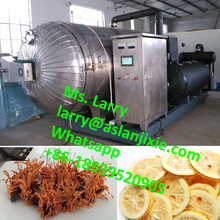 fruit lyophilizer/cold air dryer/freeze drying machine