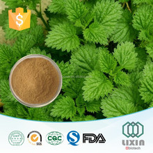 Sales sitosterol & organosilicone nettle extract for nettle leaf tea