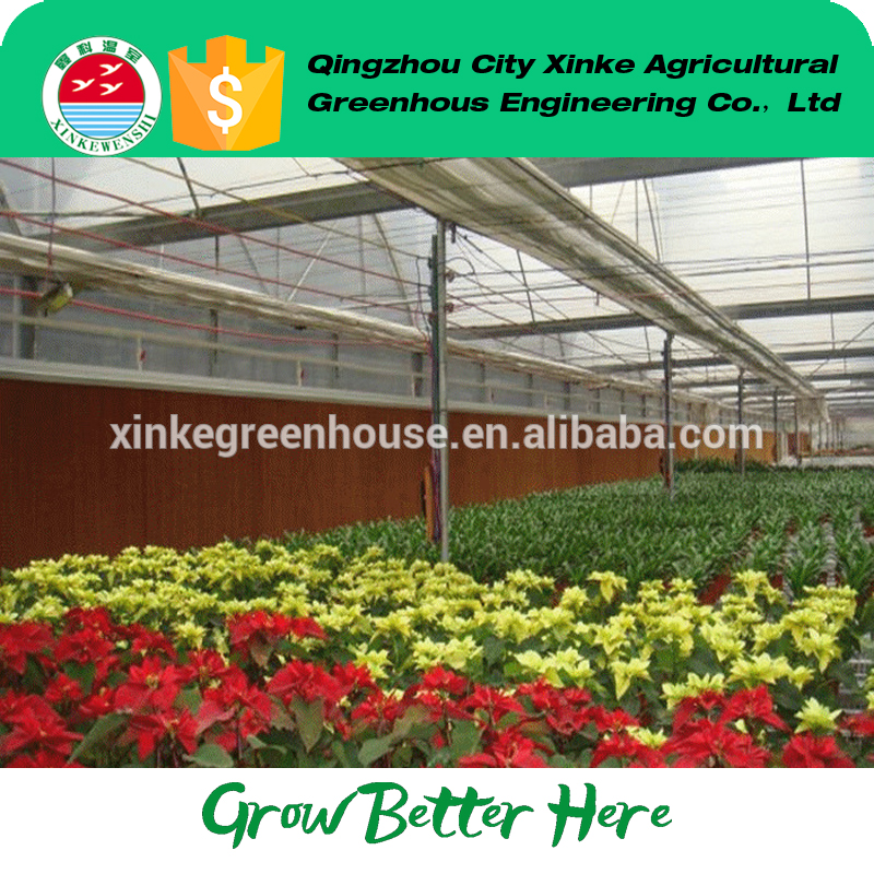 Factory wholesale polytunnel plastic greenhouse winter with Long Service Life