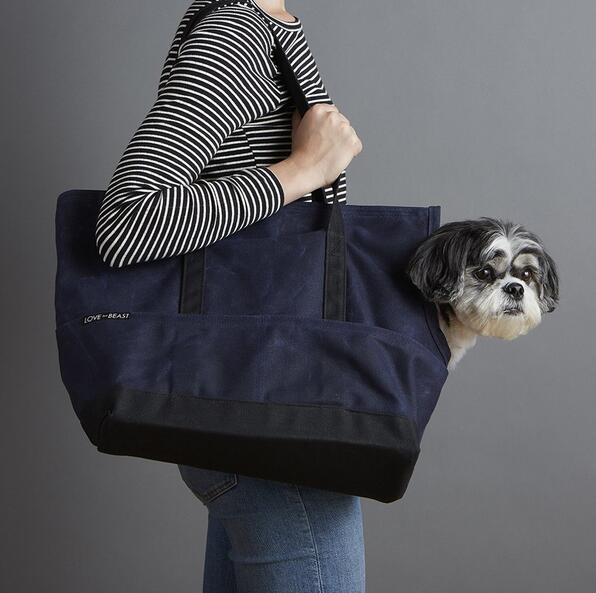 Hot selling Durable Special subway Canvas pet tote bag