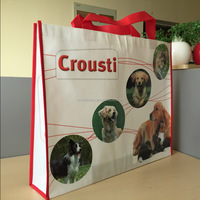 high quality pp non woven carry bag for pet shop