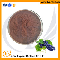 Top Quality Grape Seed Extract 95% Proanthocyanidin