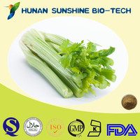 CAS No.: 520-36-5 Celery Extract 5% Apigenin Lowering Blood Pressure