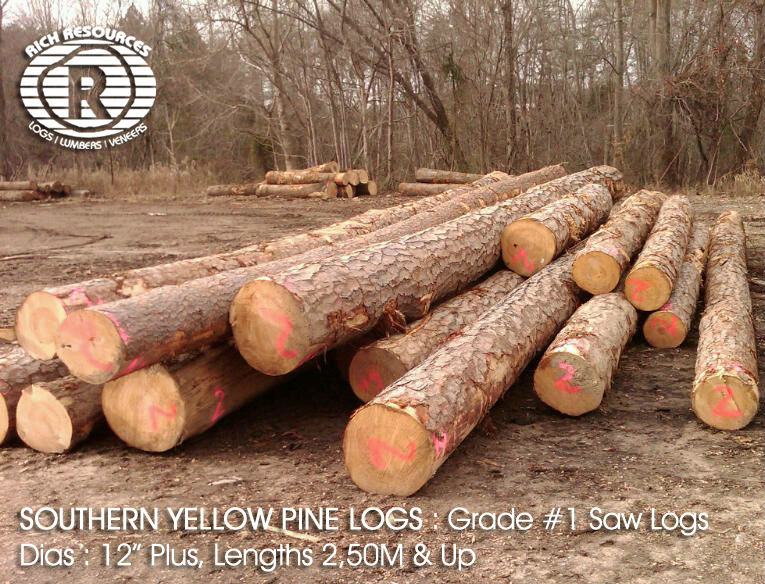 SOUTHERN YELLOW PINE LOGS FROM NORTH AMERICA