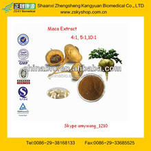 GMP Certificated Manufacture Supply Best Selling Maca Extract